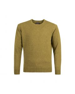 SWEATER ROUND-NECK, MUSTARD
